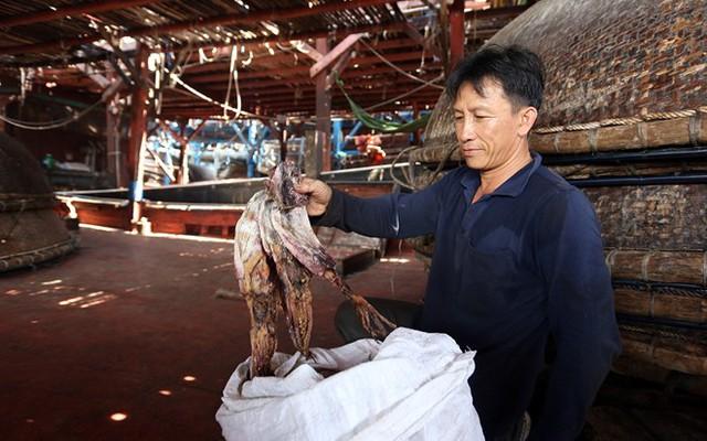 """Quảng Nam kêu gọi hỗ trợ """"giải cứu"""" mực khơi khô - Ảnh 1."""