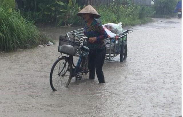 Ảnh: Cận cảnh tuyến đường biến thành đầm lầy, bẫy người đi đường nhiều năm ở Hải Phòng - Ảnh 6.