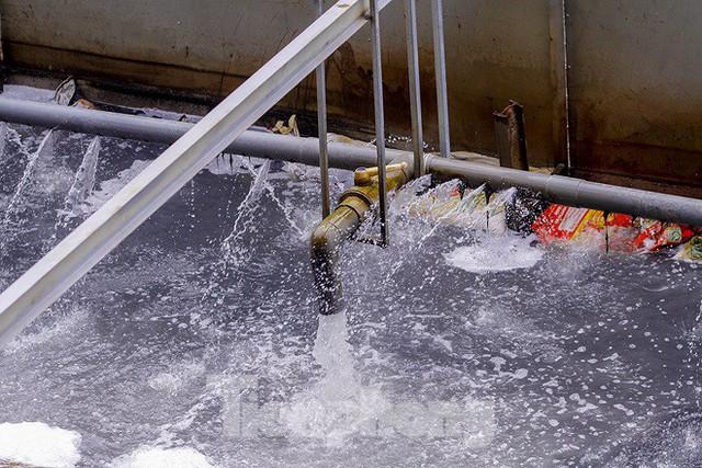 Chất lượng nước sông Tô Lịch biến chuyển ra sao khi dùng bảo bối của Nhật? - Ảnh 2.
