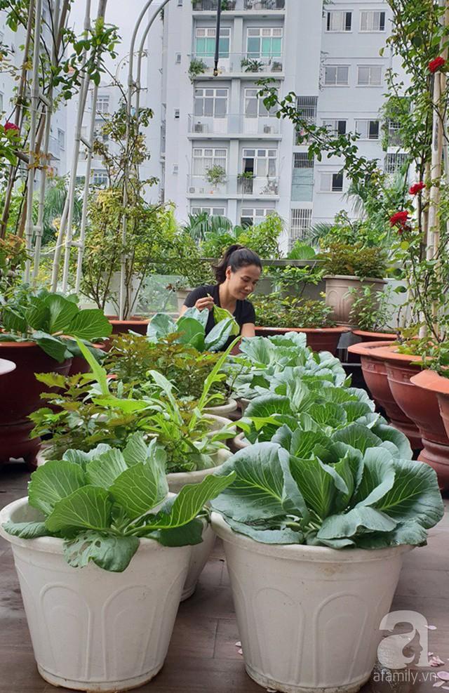 Sở hữu sân thượng rộng đến 200m², mẹ đảm ở Sài Gòn khiến nhiều người bất ngờ với trang trại rau quả tự trồng - Ảnh 3.