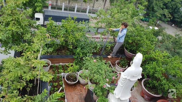 Sở hữu sân thượng rộng đến 200m², mẹ đảm ở Sài Gòn khiến nhiều người bất ngờ với trang trại rau quả tự trồng - Ảnh 5.