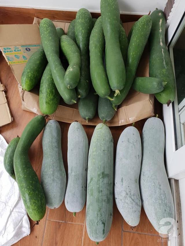 Sở hữu sân thượng rộng đến 200m², mẹ đảm ở Sài Gòn khiến nhiều người bất ngờ với trang trại rau quả tự trồng - Ảnh 8.