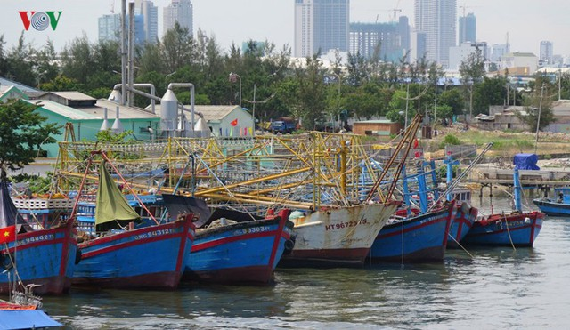 Tàu 67 nằm bờ, ngư dân nợ nần chồng chất - Ảnh 3.