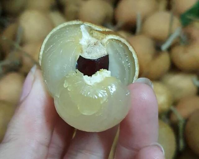 Nhãn bắp cải, hàng Việt cực hiếm, giá cực đắt có tiền khó mua - Ảnh 2.