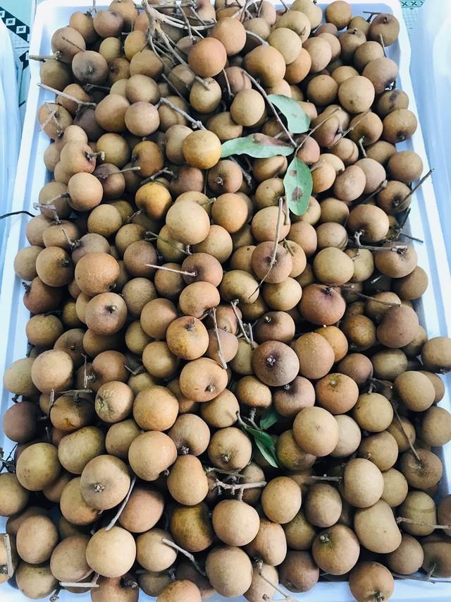 Nhãn bắp cải, hàng Việt cực hiếm, giá cực đắt có tiền khó mua - Ảnh 3.