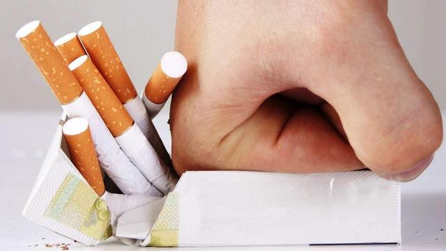 """Loại cỏ """"siêu quyền lực"""" mọc hoang ở Việt Nam: Giúp cai nghiện thuốc lá, ức chế tế bào ung thư và nhiều bệnh khác - Ảnh 2."""