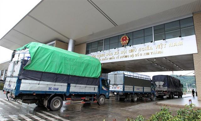Gần 15 nghìn tấn thanh long được xuất sang Trung Quốc tuần qua - Ảnh 2.