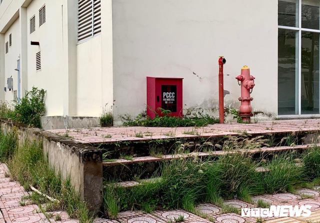 3.790 căn hộ giá gần 10.000 tỷ đồng bị bỏ hoang 4 năm tại TP.HCM - Ảnh 7.