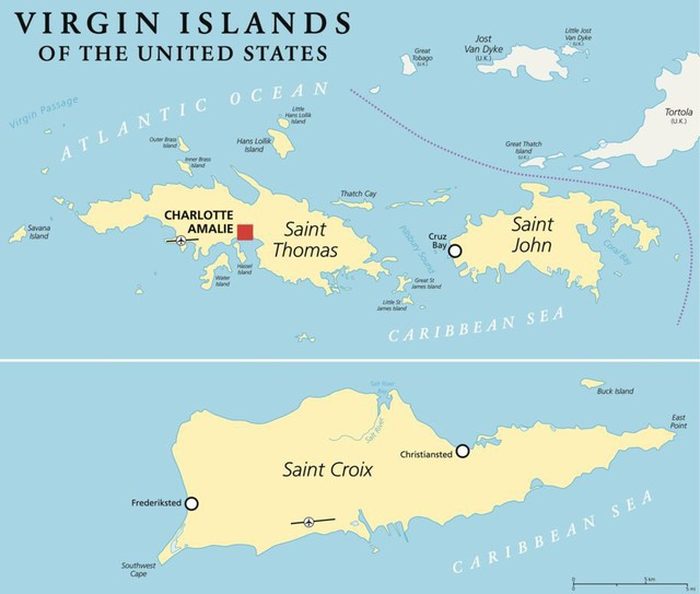 Mỹ đã mua quần đảo Virgin từ Đan Mạch như thế nào? - Ảnh 2.