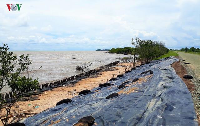 Hiện trường sau cơn thủy triều khủng khiếp tại Cà Mau - Ảnh 2.