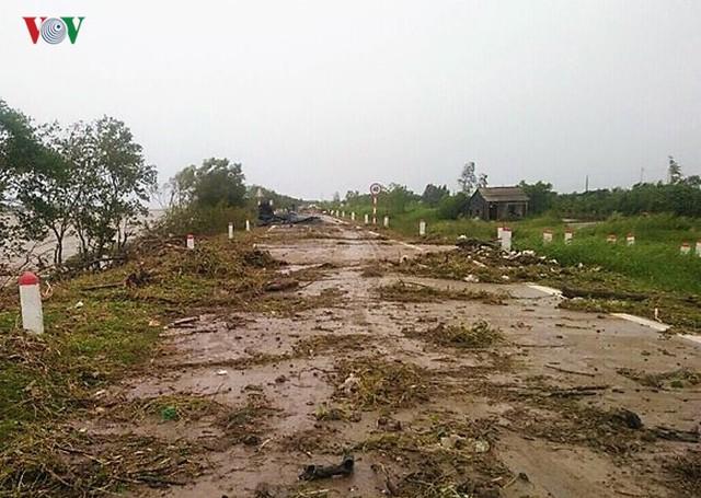 Hiện trường sau cơn thủy triều khủng khiếp tại Cà Mau - Ảnh 11.