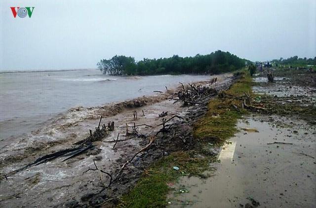 Hiện trường sau cơn thủy triều khủng khiếp tại Cà Mau - Ảnh 3.