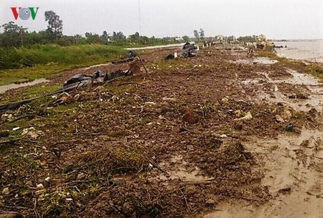 Hiện trường sau cơn thủy triều khủng khiếp tại Cà Mau - Ảnh 8.