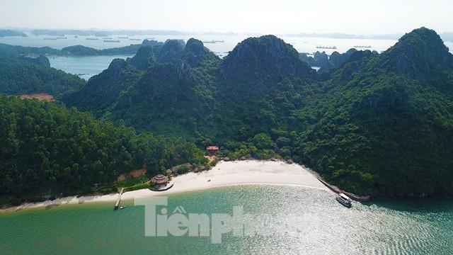 Hàng loạt đảo trên vịnh Bái Tử Long bị biến thành biệt thự, đặc khu - Ảnh 2.