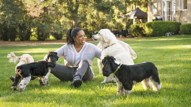 Tập duy trì thói quen buổi sáng của Oprah Winfrey trong 1 tuần, tôi nhận ra sống lành mạnh không hề dễ dàng: Nhưng hiệu quả rất đáng để thử! - Ảnh 2.