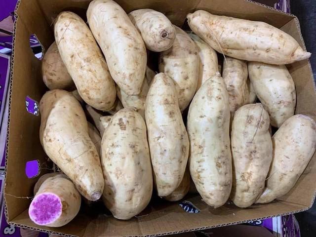 Bất ngờ củ khoai lang ruột màu tím lịm giá đắt gấp 20 lần - Ảnh 2.