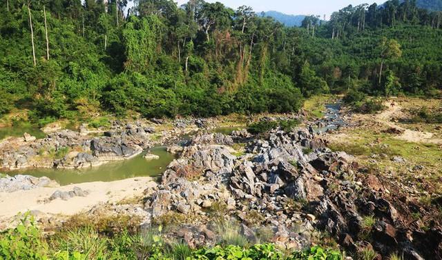 Những dòng sông chết dưới chân đập thủy điện Đắk Mi 4 - Ảnh 14.