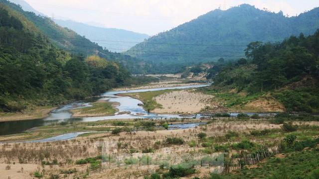 Những dòng sông chết dưới chân đập thủy điện Đắk Mi 4 - Ảnh 4.