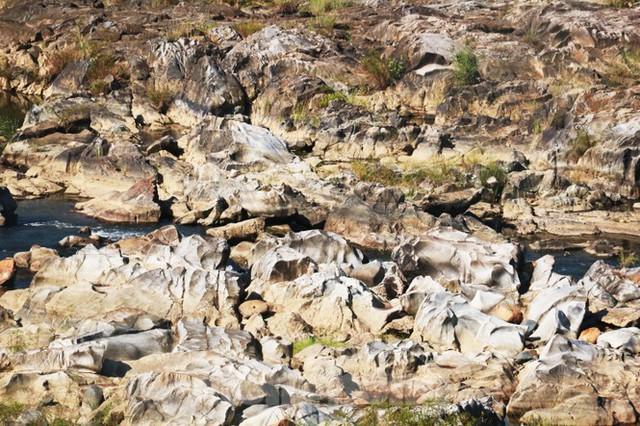 Những dòng sông chết dưới chân đập thủy điện Đắk Mi 4 - Ảnh 8.