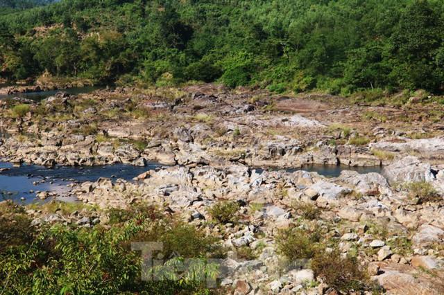 Những dòng sông chết dưới chân đập thủy điện Đắk Mi 4 - Ảnh 9.