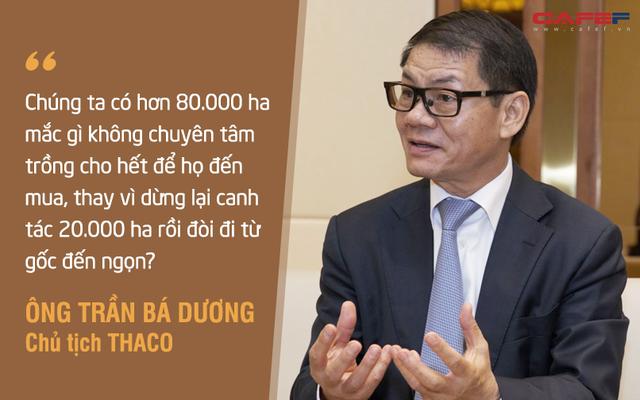 Rót hơn tỷ USD vào HAGL: Chuyện chẳng đùa và giấc mơ khủng về hệ sinh thái nông nghiệp của tỷ phú Trần Bá Dương (Kỳ 2) - Ảnh 2.