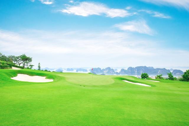 Du lịch Việt khởi sắc mạnh mẽ trên vai doanh nghiệp tư nhân  - Ảnh 1.