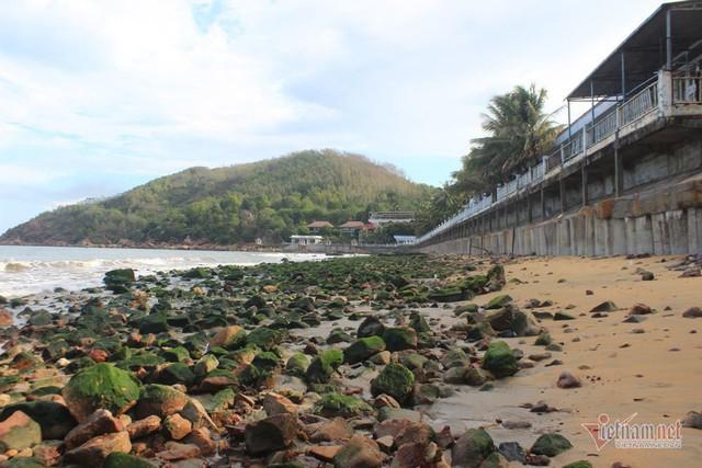 Bãi đá lô nhô 30 năm chưa từng có bỗng mất tích ở bãi biển Quy Nhơn - Ảnh 1.