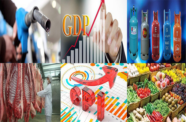 Giá lợn, xăng và gas có thể tăng 10 - 15% - Ảnh 1.