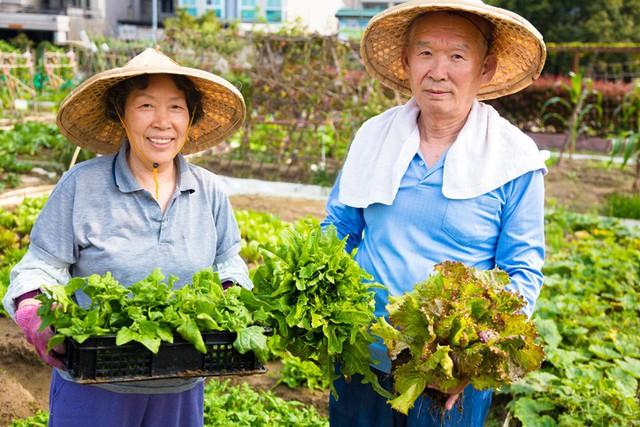 """Okinawa - vùng đất của những người bất tử: Hãy nhìn vào cách sinh hoạt của những người dân nơi này để thấy chúng ta đã """"sống sai cách"""" như thế nào - Ảnh 3."""