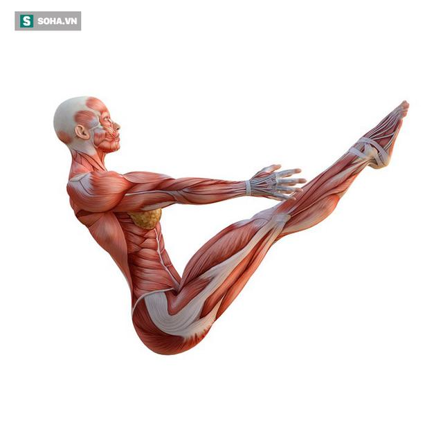 6 bài tập tốt nhất để trẻ hóa, giúp cơ thể bền mãi với thời gian: Bạn đã tập thử chưa? - Ảnh 3.