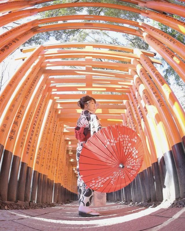 Loạt cổng Torii huyền thoại dọc khắp xứ Phù Tang, có nơi nối dài đến hơn... 10.000 cái - Ảnh 9.