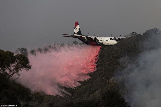 Hỏa Diệm Sơn ở Úc: Đám cháy lớn từ 2 nơi nhập vào nhau tạo thành ngọn lửa khổng lồ thiêu đốt hơn nửa triệu héc ta - Ảnh 3.