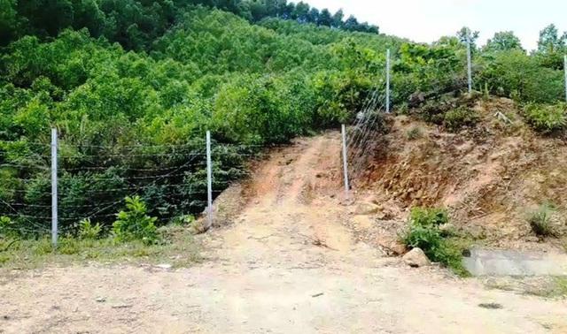 Hàng rào bảo vệ trên cao tốc 11.000 tỷ bị xé nát bươm - Ảnh 5.