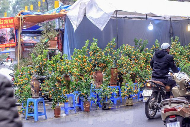 Không khí Tết ngập tràn phố phường Thủ đô - Ảnh 7.