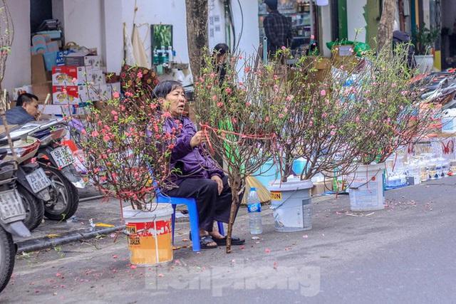 Không khí Tết ngập tràn phố phường Thủ đô - Ảnh 9.