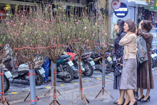 Không khí Tết ngập tràn phố phường Thủ đô - Ảnh 10.