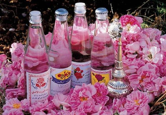 Câu chuyện về những bông hồng thơm nhất thế giới của Iran: Cả một thị trấn toàn hoa hồng, người dân làm một tháng là đủ tiền tiêu cả năm không hết - Ảnh 10.