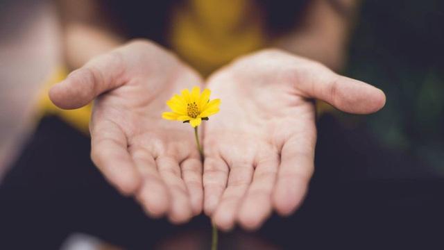 Trong phúc có họa, trong họa có phúc, vạn vật thay đổi khó lường nên BÌNH TĨNH trước mọi sự trong đời mới là cách hành xử của người có trí tuệ - Ảnh 2.