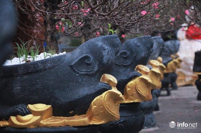 Chuột cưỡi hũ vàng, cõng đào, quất Nhật Tân hút khách - Ảnh 1.