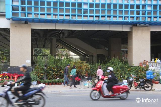 Vỉa hè, sân nhà ga đường sắt trên cao Cát Linh - Hà Đông thành chợ hoa Tết - Ảnh 2.