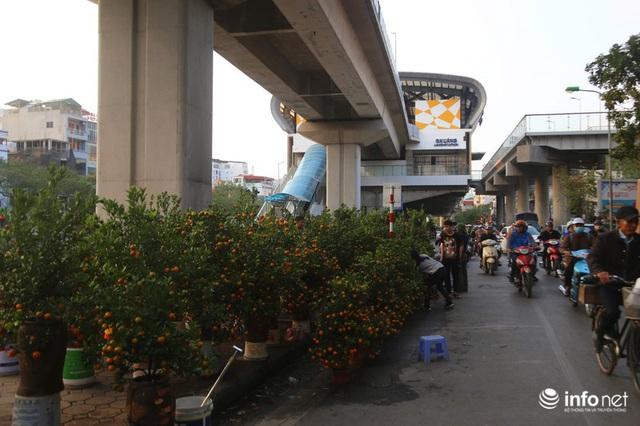 Vỉa hè, sân nhà ga đường sắt trên cao Cát Linh - Hà Đông thành chợ hoa Tết - Ảnh 12.