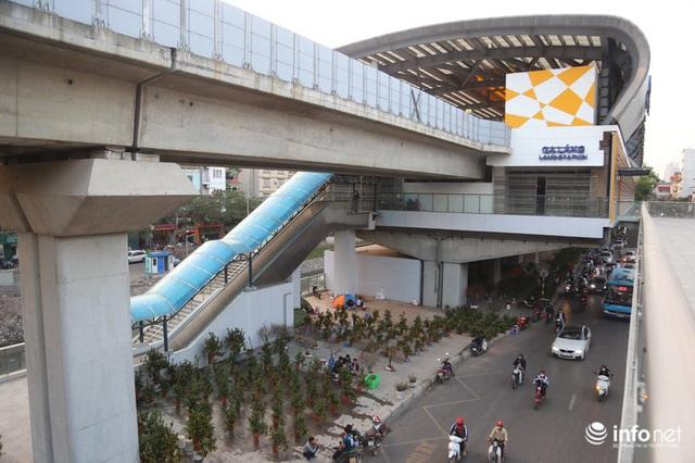 Vỉa hè, sân nhà ga đường sắt trên cao Cát Linh - Hà Đông thành chợ hoa Tết - Ảnh 13.