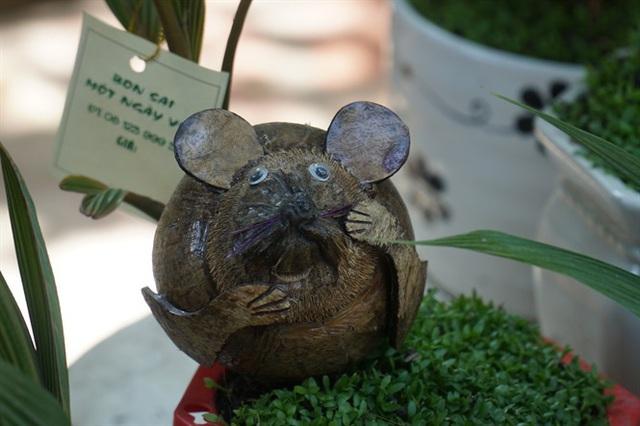 Độc đáo bonsai dừa hình chuột - Ảnh 6.