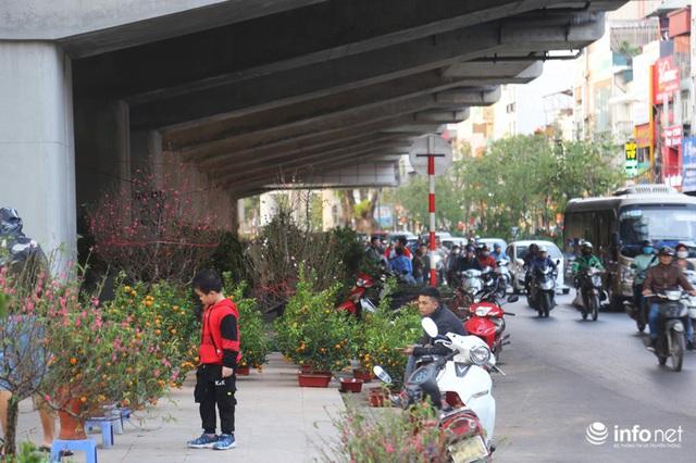 Vỉa hè, sân nhà ga đường sắt trên cao Cát Linh - Hà Đông thành chợ hoa Tết - Ảnh 8.