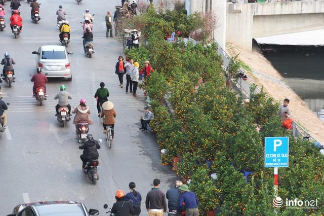Vỉa hè, sân nhà ga đường sắt trên cao Cát Linh - Hà Đông thành chợ hoa Tết - Ảnh 9.
