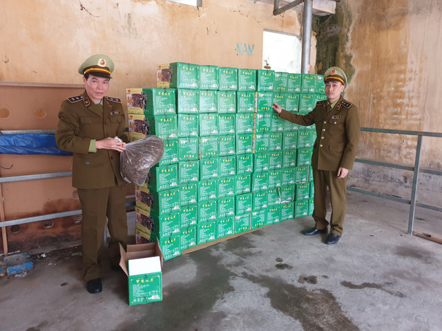 Tạm giữ hàng trăm kg hạt hướng dương do Trung Quốc sản xuất không có hóa đơn chứng từ - Ảnh 1.