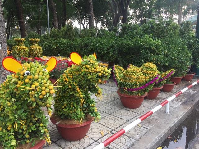 Chợ hoa Tết ở TP HCM đồng loạt mở cửa sáng 23 tháng Chạp - Ảnh 2.