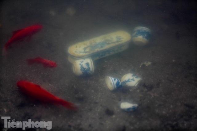 Cá chép vàng tiễn ông Táo vừa thả đã chết nổi ở hồ Hoàng Cầu - Ảnh 11.