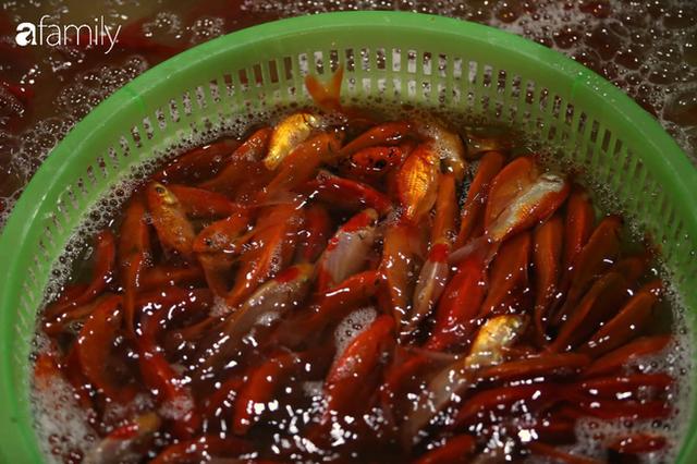 Ngày ông Công ông Táo, chợ cá lớn nhất Hà Nội cháy hàng cá chép từ rạng sáng - Ảnh 14.