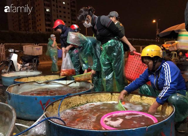 Ngày ông Công ông Táo, chợ cá lớn nhất Hà Nội cháy hàng cá chép từ rạng sáng - Ảnh 3.
